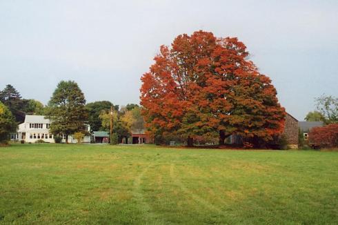 BRADSTREET_FARM_Massachusetts_Rowley_Photo_001